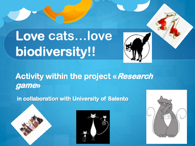 Study of intraspecific biodiversity of cats in Cavallino